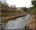 SS9596 : Rocky stream in Cwmparc by Jaggery
