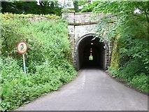 SK0957 : Swainsley Tunnel by Nigel Mykura