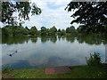 TM0954 : Needham Lake by Hamish Griffin