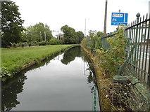 TL3514 : The River Lea at Ware by David Howard