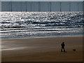 NZ5230 : Walking the dog on Seaton Sands by John Lucas