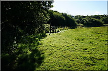 SX5856 : Path and Stile by jeff collins