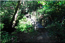 SX5856 : Small Footbridge, below Hemerdon Siding by jeff collins
