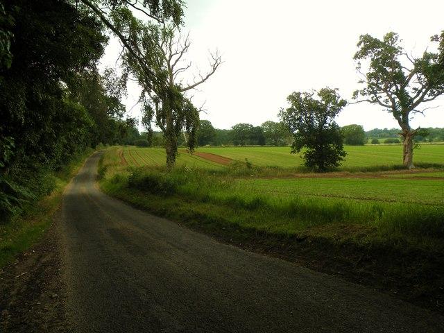 Farmland by Tinker Brook