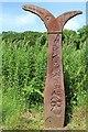 NX4365 : Millennium Milepost near Calgow by Leslie Barrie