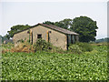 TG3918 : RAF hut in sugar beet crop by Evelyn Simak