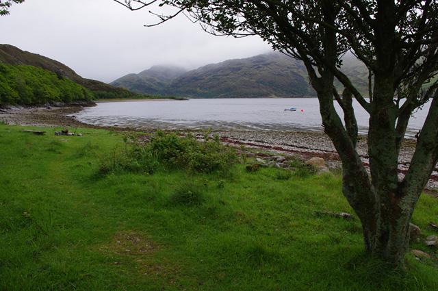 Loch Hourn foreshore