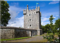 M2837 : Castles of Connacht: Annaghdown, Galway (2) by Mike Searle