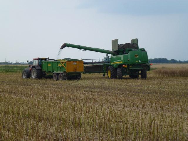 Rapeseed harvest on Glassmoor near Pondersbridge