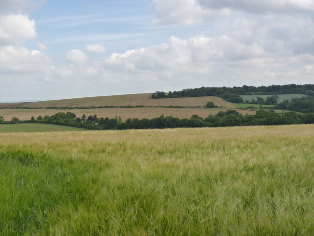 View from Nuffield Hill