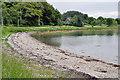 NM7701 : Pebble Beach, Craignish by Stuart Wilding