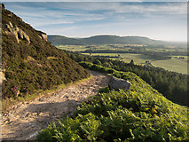 NZ5906 : Ingleby Bank by Colin Grice