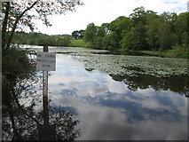"""NS5379 : """"No fishing� sign – Carbeth Loch by Peter S"""