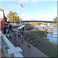SO8540 : Waterfowl on the south bank of the Severn, Upton-upon-Severn by Jaggery