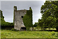 M7645 : Castles of Connacht: Castle Ffrench, Galway (1) by Mike Searle