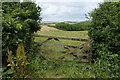 SW6523 : Field entrance near Chyvarloe by Bill Boaden