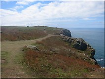 SM7210 : Footpath around the Northern edge of Skomer Island by Dr Duncan Pepper
