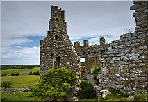 M8738 : Castles of Connacht: Cloonbigny, Roscommon (2) by Mike Searle