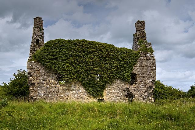 Castles of Connacht: Dundonnell, Roscommon (3)