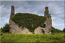 M8937 : Castles of Connacht: Dundonnell, Roscommon (3) by Mike Searle