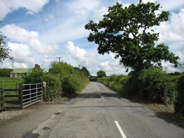 The lane to Ballywilliam