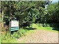 TL4300 : Track in Warren Plantation by Des Blenkinsopp
