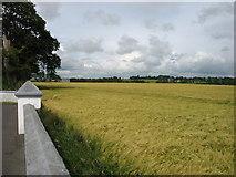 S8768 : Farmland at Ardattin by David Purchase