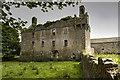 G2825 : Castles of Connacht: Cottlestown, Sligo (2) by Mike Searle