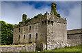 G2825 : Castles of Connacht: Cottlestown, Sligo (3) by Mike Searle