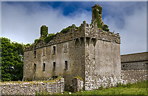 G2825 : Castles of Connacht: Cottlestown, Sligo (3) by Mike Searle