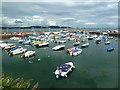 SX8960 : Paignton Harbour by Chris Allen