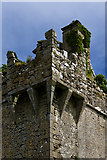 G2825 : Castles of Connaught: Cottlestown, Sligo - detail (4) by Mike Searle