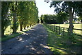 SE8244 : The entrance drive to Granary Hall by Ian S