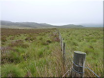 SH8140 : Boundary fence running downhill by Richard Law
