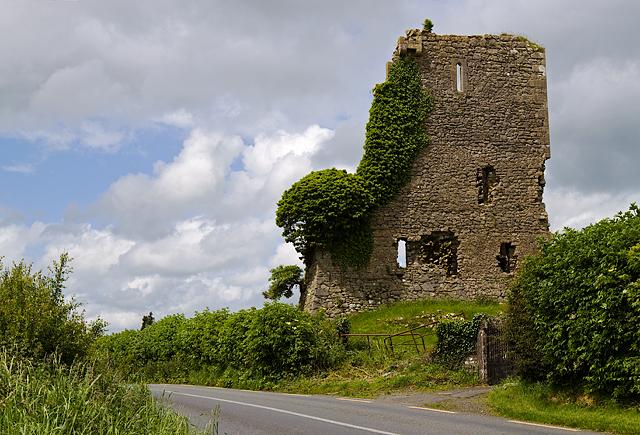 Castles of Leinster: Carrick, Kildare (1)