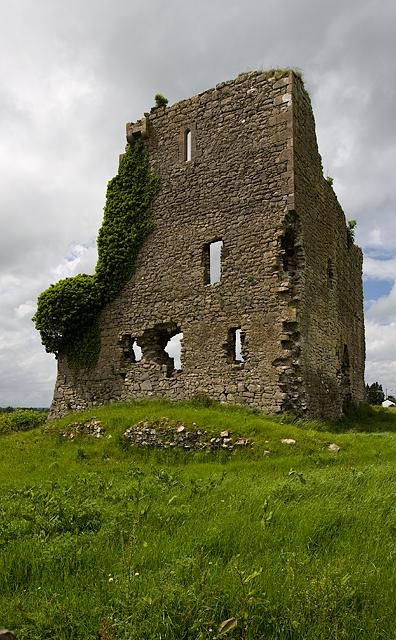 Castles of Leinster: Carrick, Kildare (3)