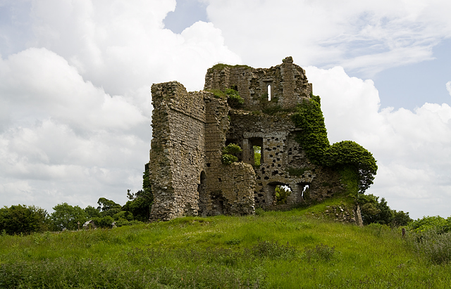 Castles of Leinster: Carrick, Kildare (4)