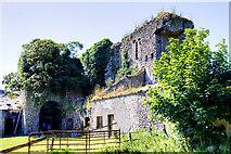 N4239 : Castles of Leinster: Newcastle, Westmeath (2) by Mike Searle