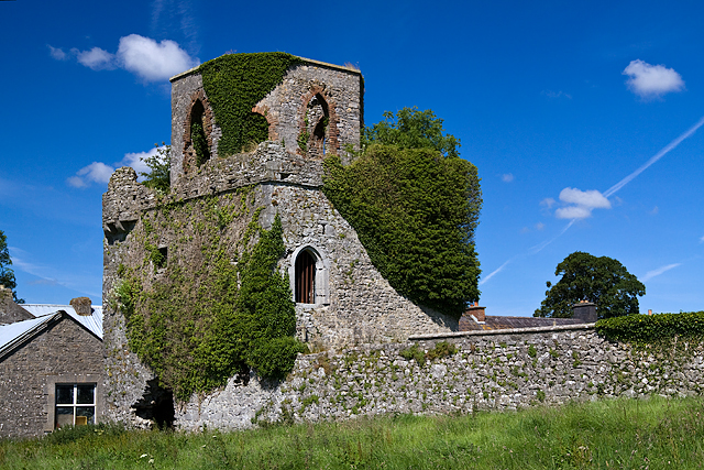 Castles of Leinster: Toberdaly, Offaly (1)