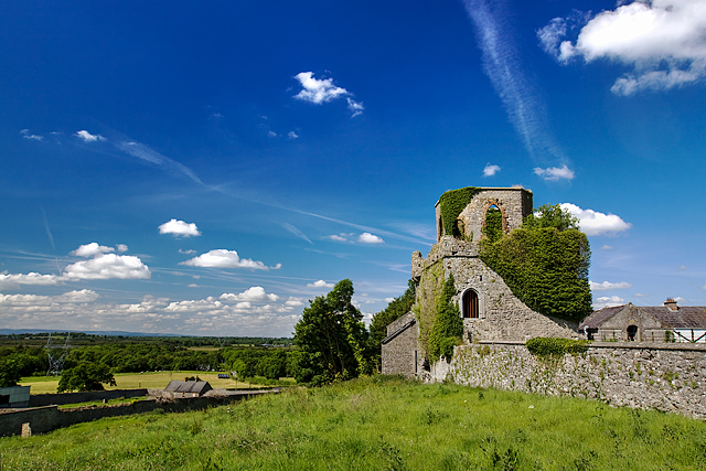 Castles of Leinster: Toberdaly, Offaly (2)