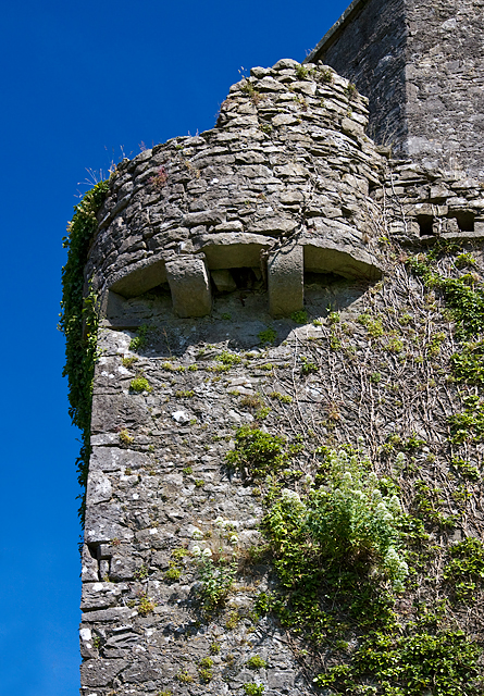 Castles of Leinster: Toberdaly, Offaly (3)