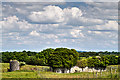 N2217 : Castles of Leinster: Killooly, Offaly (1) by Mike Searle