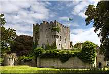 M9711 : Castles of Leinster: Cloghan, Offaly (1) by Mike Searle