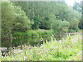 NT7032 : Fly fishing on the River Teviot by Oliver Dixon