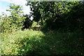 SE8043 : Bridleway towards Hayton Field Farm by Ian S