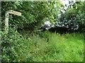 ST3017 : Signpost, public footpath to Caige Bush Farm by Christine Johnstone