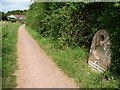 ST3029 : The Earth at Maunsell Locks, Bridgwater & Taunton Canal by Christine Johnstone