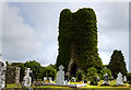 M7490 : Cloonshanville Priory, Frenchpark, Roscommon (1) by Mike Searle