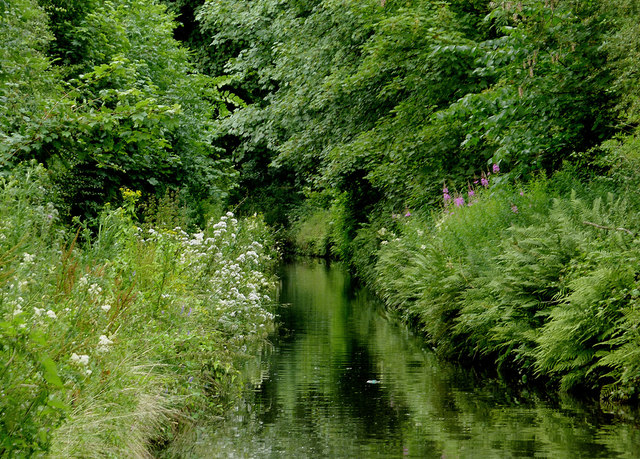 Marsh Lane Narrows at Fordhouses, Wolverhampton