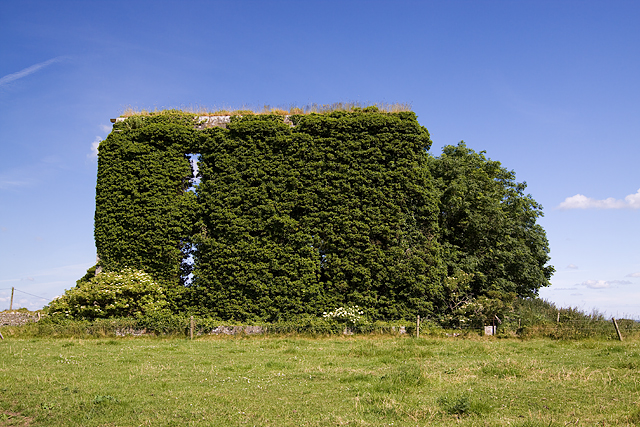 The ruins of Toberdaly House, Toberdaly Demesne, Offaly